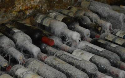 Vinuri de peste 6.000 de ani au fost descoperite în Sicilia