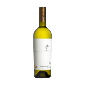 La Salina Sauvignon Blanc 2016